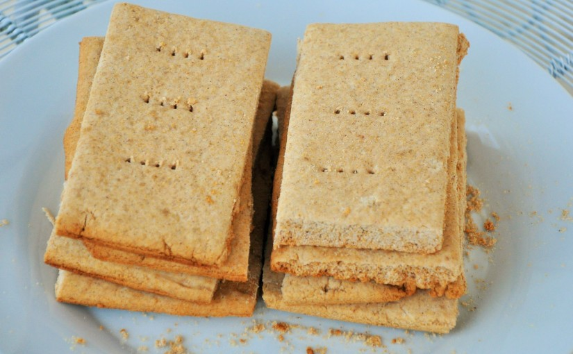 Honey Graham Crackers (Free of Gluten, Dairy, Eggs, Nuts, Soy, andRice)