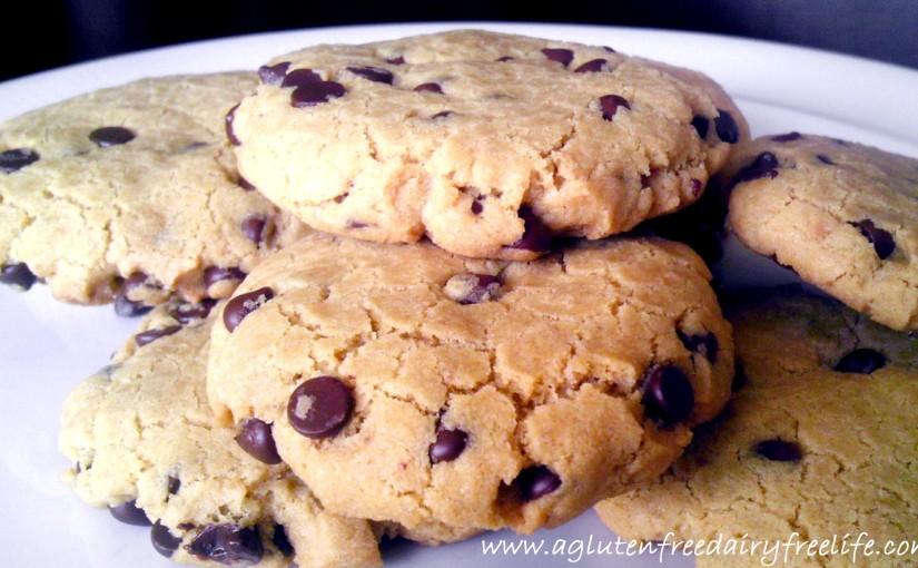 Vegan Chocolate Chip Cookies (Gluten Free, Egg Free, and DairyFree)